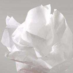 Papier de soie Canson - Rouleau 0.5x5m