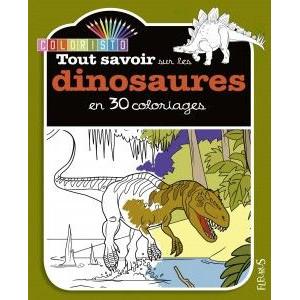 Tout savoir sur les dinosaures en 30 coloriages - Livre