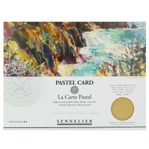 Pochette de 6 Pastel Card jaune de naples Sennelier
